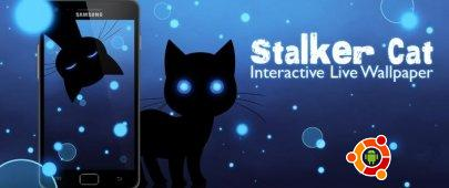 Живые обои STALKER CAT LIVE WALLPAPER LT